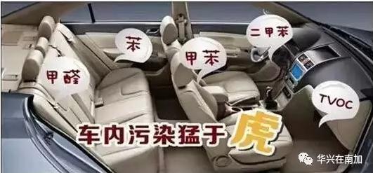 danger in car.PNG