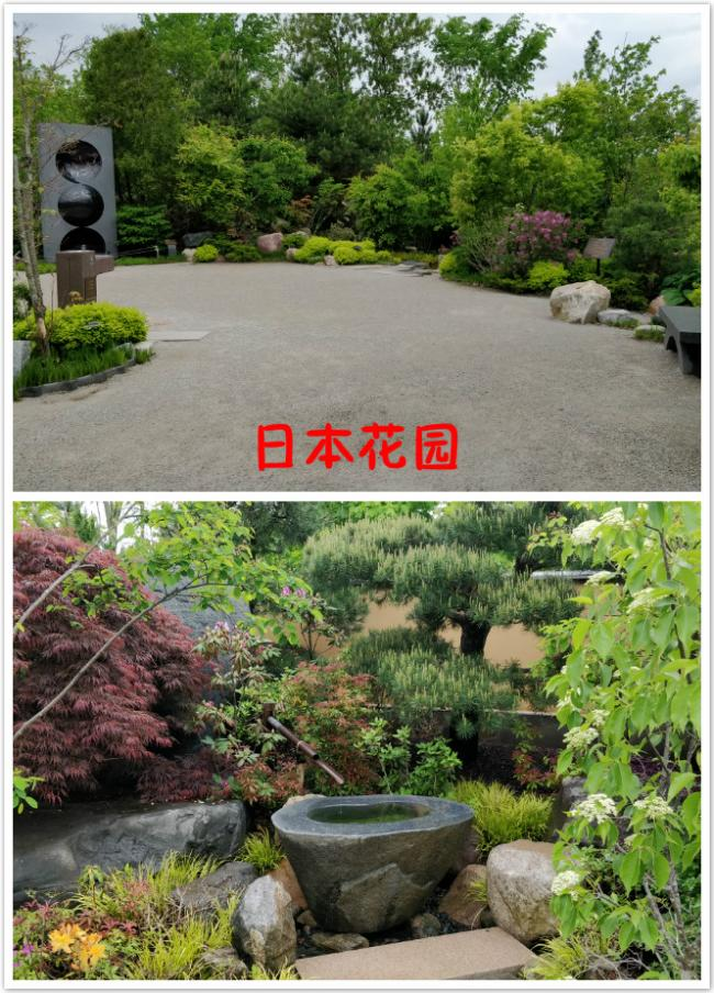 1 日本花园.jpg